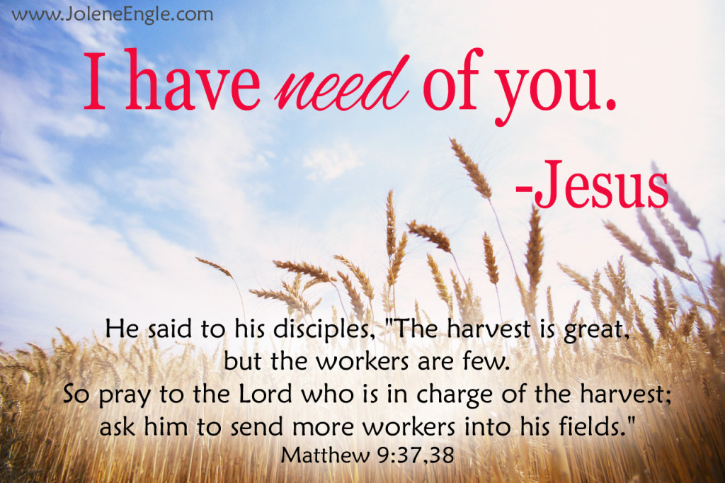 The harvest is plentiful and the workers are few.