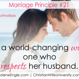 Marriage Principle #20 from the life of Mary- Wives of the Bible by Jolene Engle