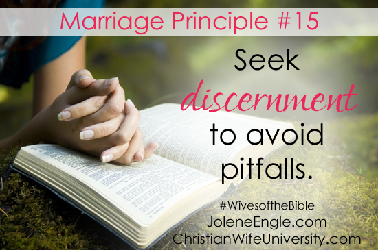 Marriage Principle #15 from the life of Abigail- Wives of the Bible by Jolene Engle