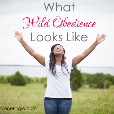 What Wild Obedience Looks Like